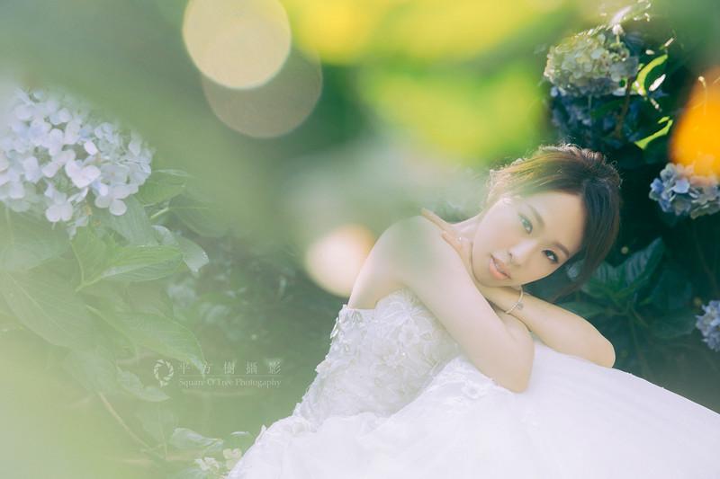 平方樹SquareOTree_繡球花_fen_01.JPG