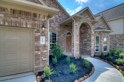 6303 Loblolly Vista Tiffany B Pines