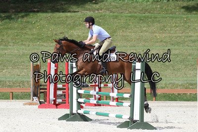 Grand Prix Ring: Low Child/Adult and Level 1 Jumpers