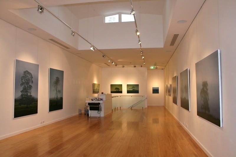 2008 Recent Paintings, Tim Olsen Gallery, Sydney