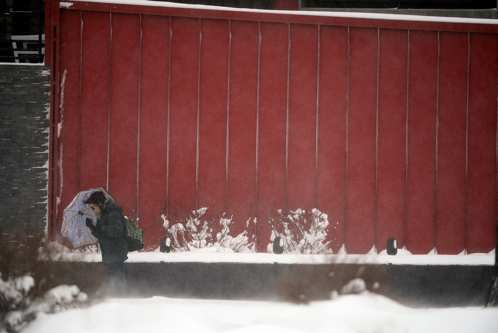 . DENVER, CO. - MARCH 23RD: A pedestrian tries to shield herself from blowing snow along University Blvd and Buchtel Ave in Denver Colorado, March 23RD, 2013. (Photo By Andy Cross/The Denver Post)