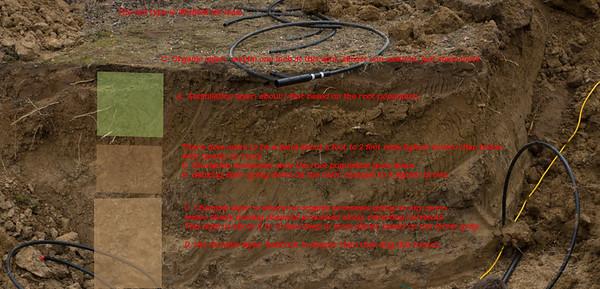 The soil factor