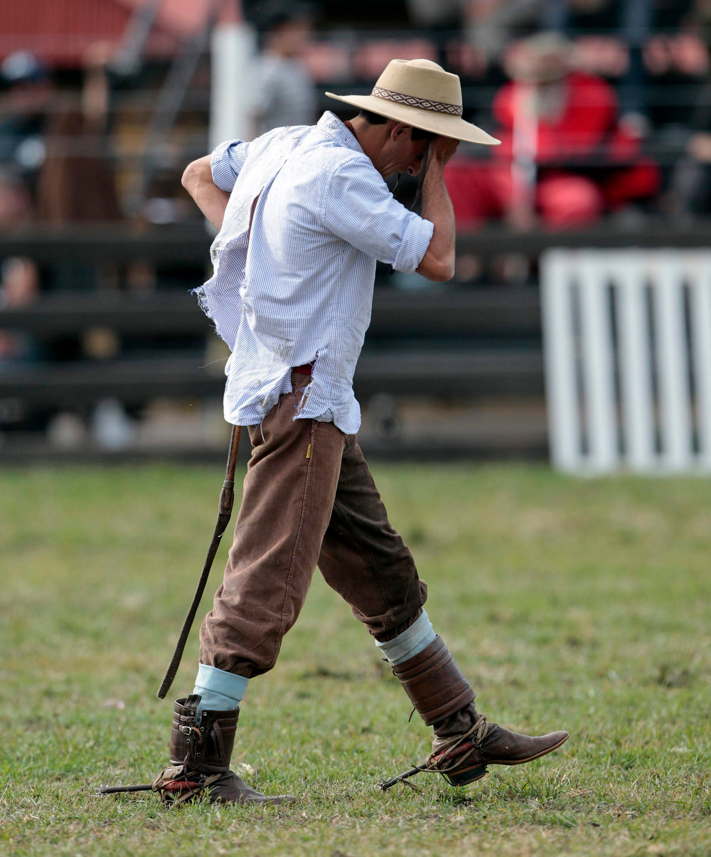 ". A gaucho reacts in pain after being unseated by an unbroken horse during the annual celebration of Criolla Week in Montevideo, March 25, 2013. Throughout Easter Week ""gauchos\"", the Latin American equivalent of the North American \""cowboy\"", from all Uruguay and neighboring Argentina and Brazil visit Montevideo to participate in Criolla Week to win the award of best rider. The competition is held March 24 - March 30. REUTERS/Andres Stapff"