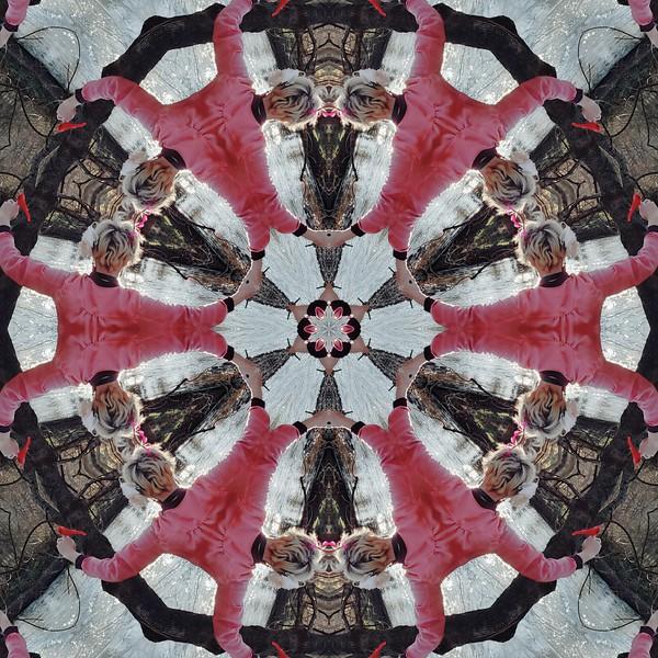 9676_mirror3.jpg