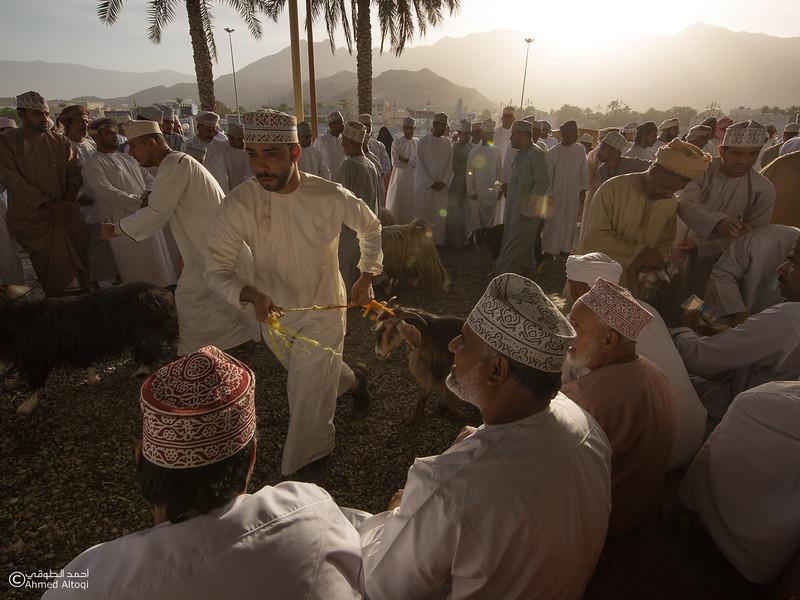 FE2A1867-1 (1)- Oman.jpg