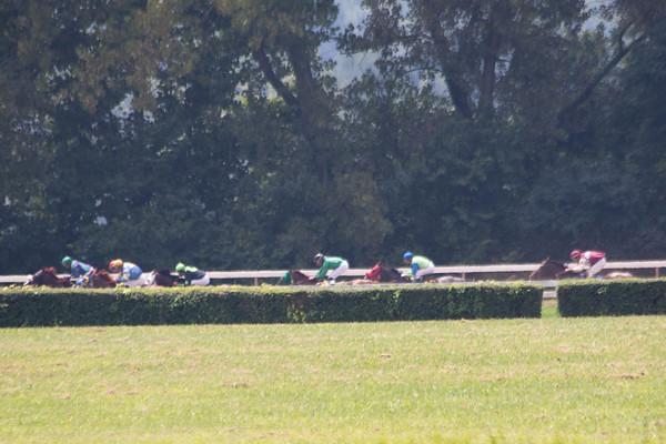 Keeneland / Horse Racing