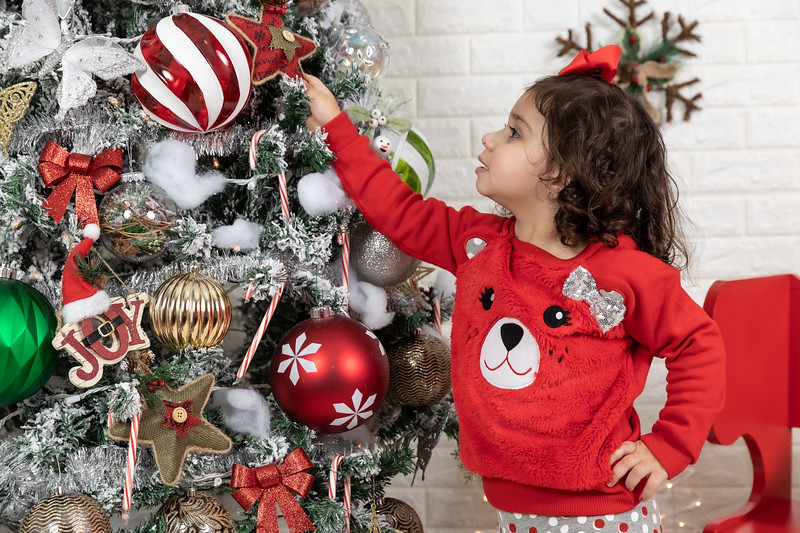 11.30.19 - Clarice's Studio Christmas Mini Session - -59.jpg