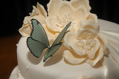 Your wedding reception
