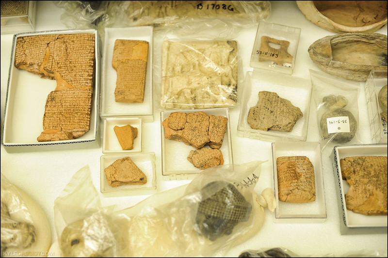 brad-hafford-day-of-archaeology-kyle-cassidy0117.jpg