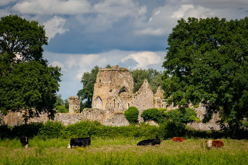 Athassel Priory, Co, Tipperary