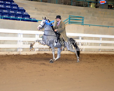CLASS 29  PARK PERFORMANCE OPEN SPECIALTY
