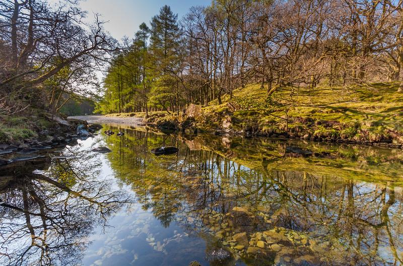 Reflections in River Derwent