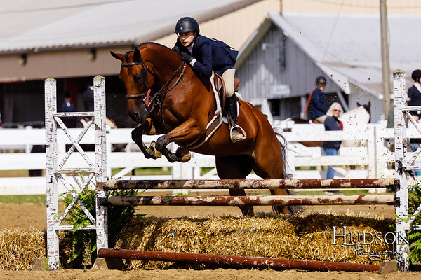 25 Equit over Fences