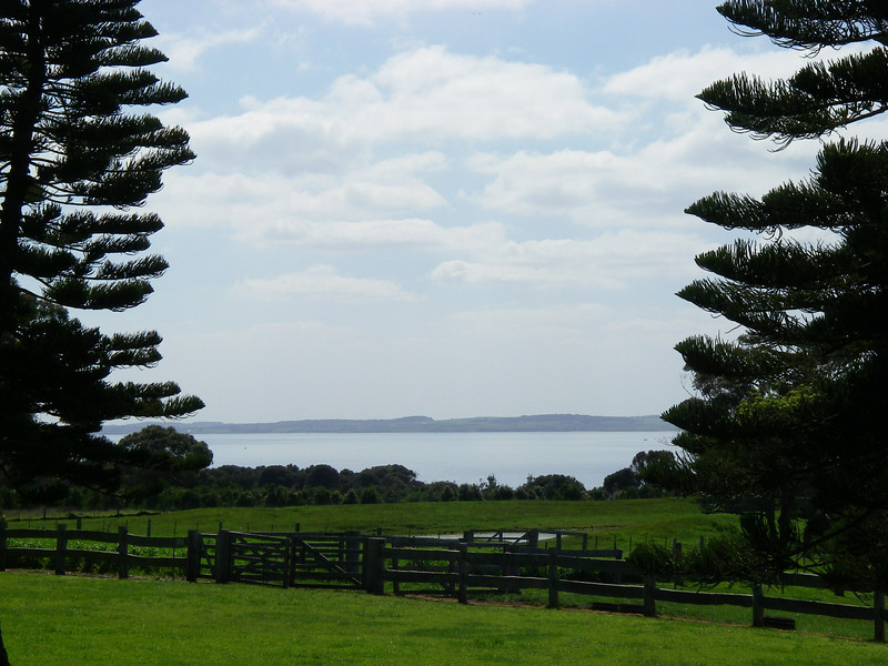 Puffing Billy and Phillip Island 116.JPG