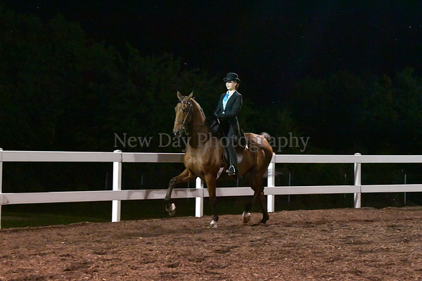 57.  $200 ASB 5-Gaited Park Open