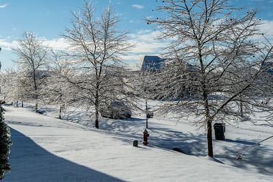 First Snow - December 2020