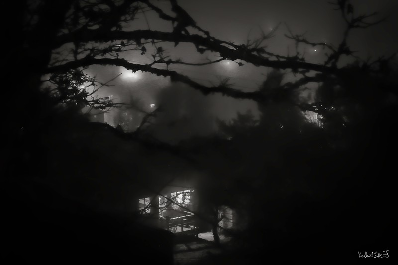 moon in the mist window with tree bw (1 of 1)014.jpg