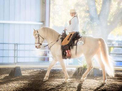2013 Cowboy Dressage World Gathering