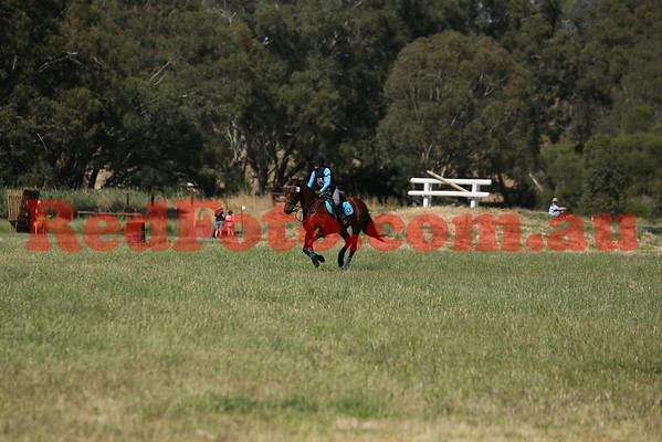 2014 11 09 Swan Valley Hunter Trials 80cm 17yrs and Over