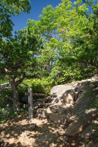 Acadia Nat'l Park-Terry's - July 2017-402-Edit.jpg