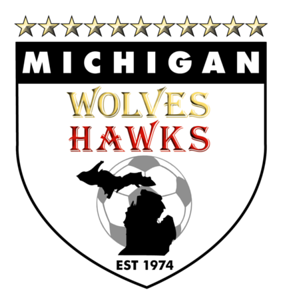 u13 Girls Michigan Hawks