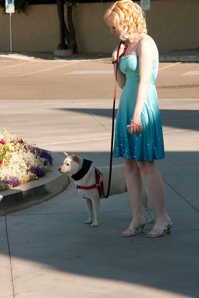 Dog of honor.