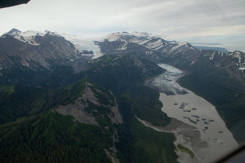 Alaska Icy Bay-4521.jpg