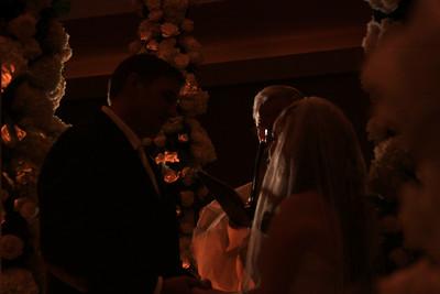 Michelle Goldstein wedding