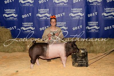 Hog Backdrop