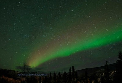 Alaska W 2016