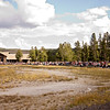 0904113_MammothtoOldFaithful_206
