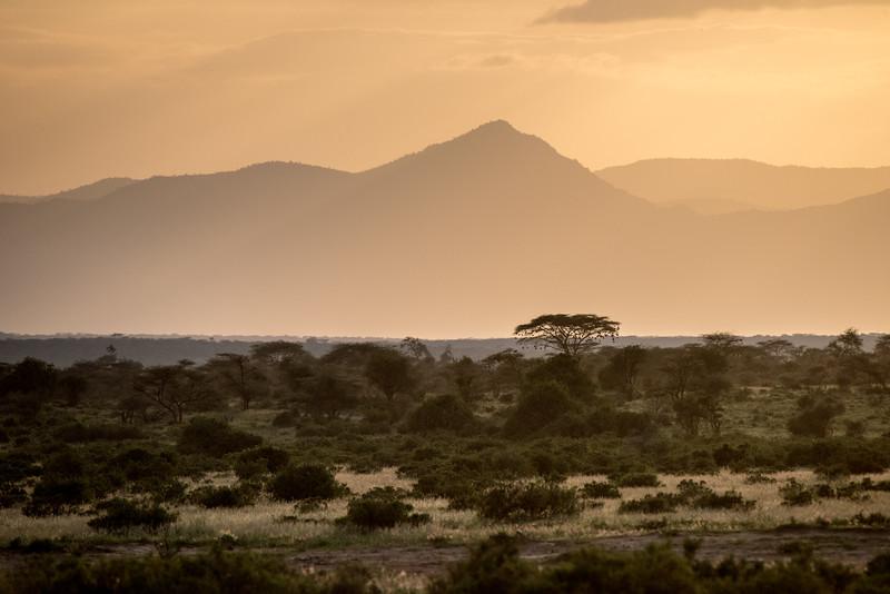 Samburu (20 of 70).jpg