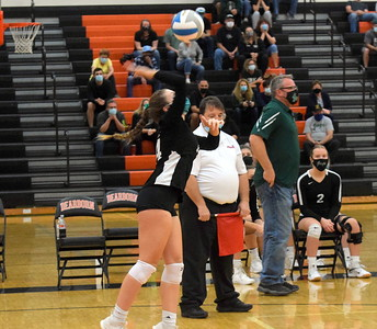 HS Sports - Allen Park vs Novi Volleyball 20