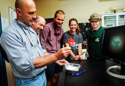 Biology Snake Lab
