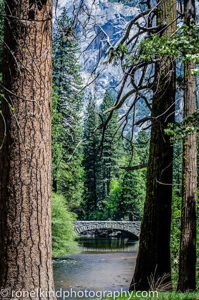 Yosemite-0004-2.jpg