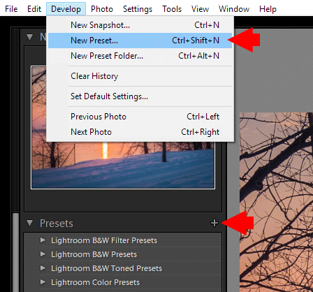 How to Save Presets in Lightroom - Use the shortcut Ctrl + Shift + N