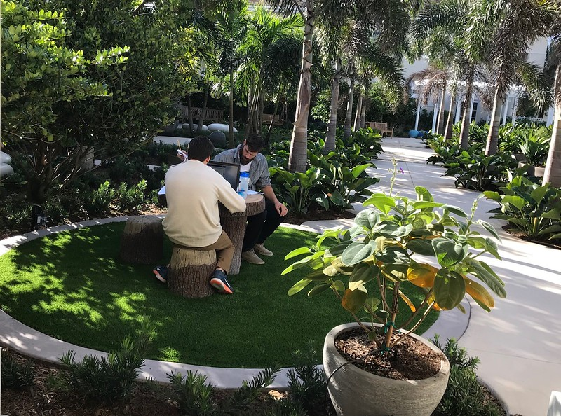 Sensory Arts Garden (10).jpg