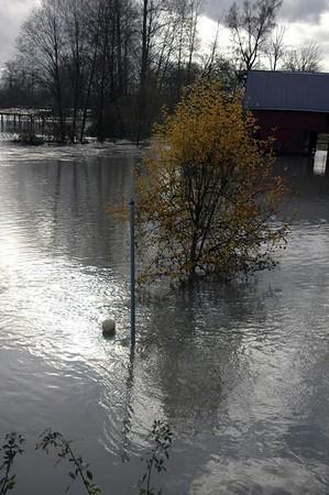 60 foot flood - November, 2008