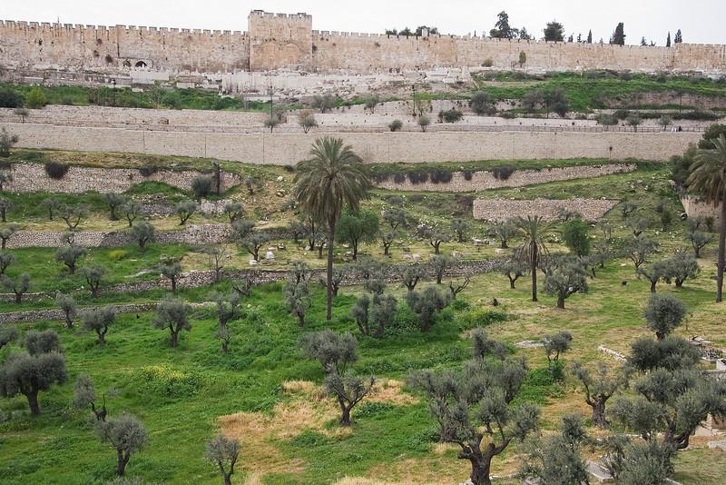 Jerusalem Wall #2.jpg
