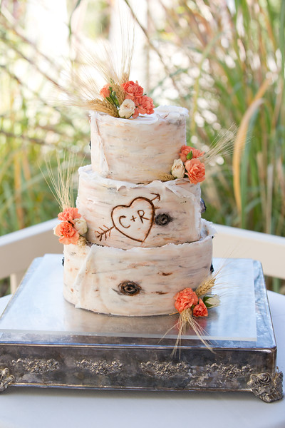 09-17-2016 Robbi and Chase Wedding