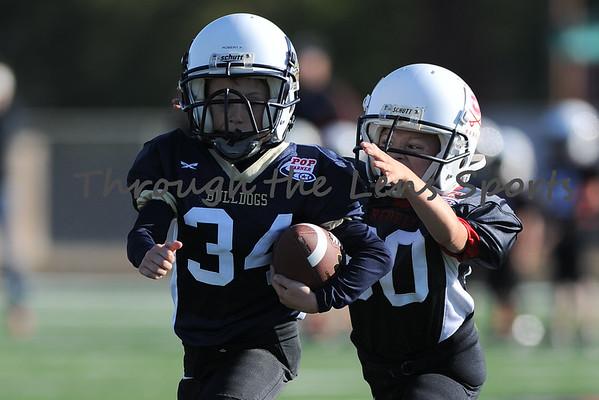 Rebels Black vs. Bulldogs Gold Tiny Mite