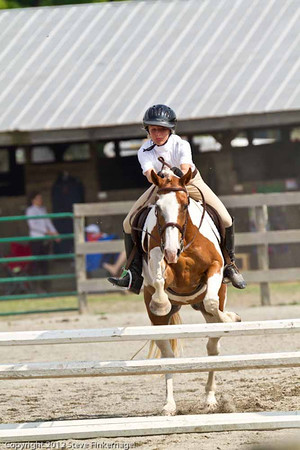 Bradford County Roundup Low Working Hunter Horses