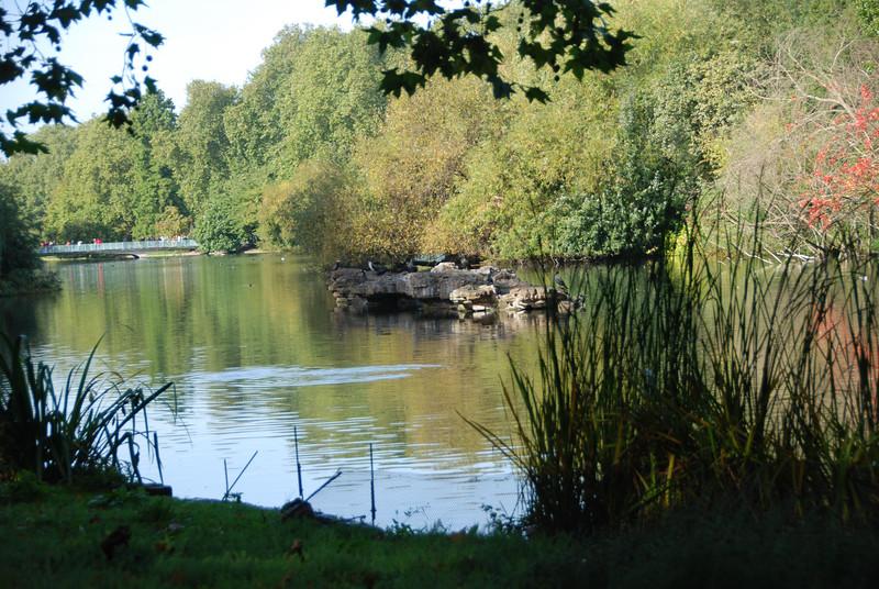2010 LondonDSC_8187-10.jpg