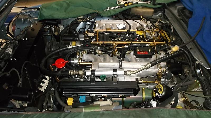 DSCF0304-2 (2).JPG