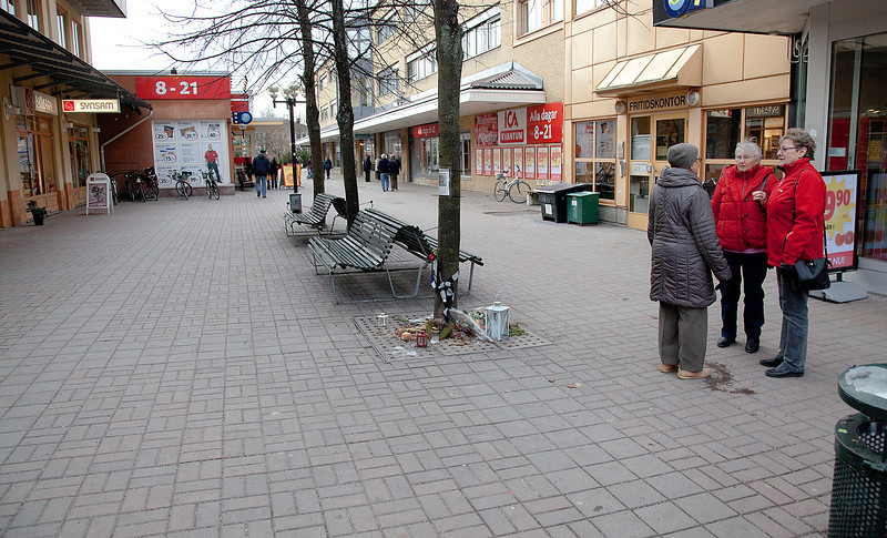 Dag_223_2012-nov-20_3128.jpg