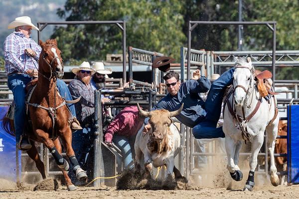 2019 San Dimas Rodeo - Sunday (In Progress)