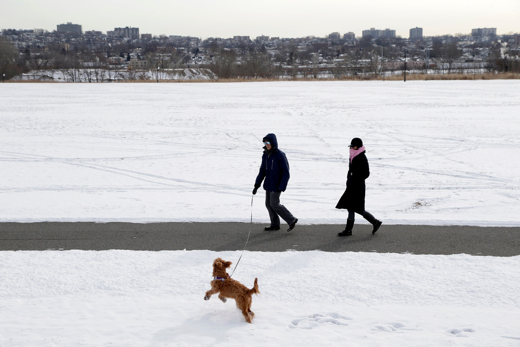 . People bundled up against the cold walk their dog in a park in Fort Lee, N.J., Monday, Jan. 9, 2017. As the East Coast waits to thaw out from a weekend icy mess, another storm is bringing rain and the potential of the worst flooding in more than a decade to the West coast. (AP Photo/Seth Wenig)