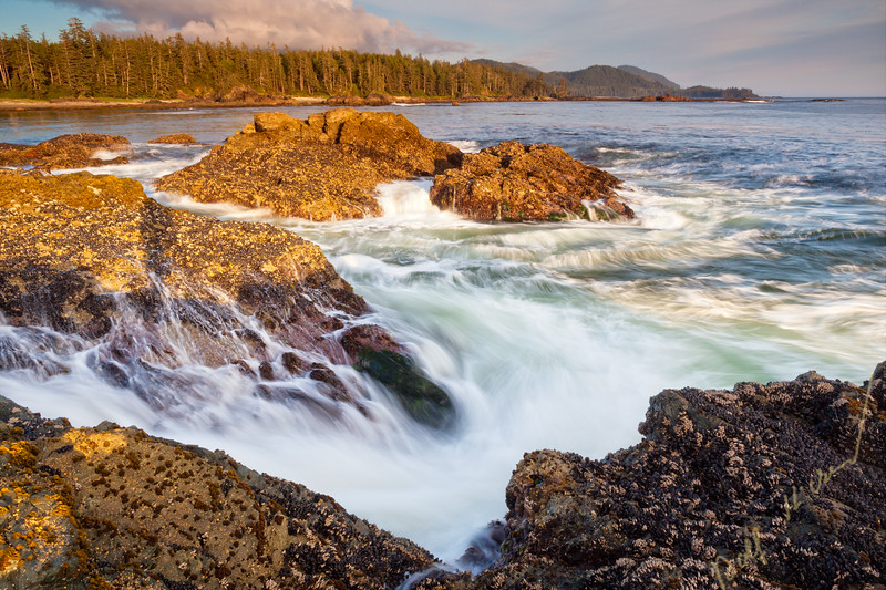 Wild West Coast of Northern Vancouver Island near Cape Scott Provincial Park, British Columbia, Canada. Waves crashing along coastline photographed in long exposure.