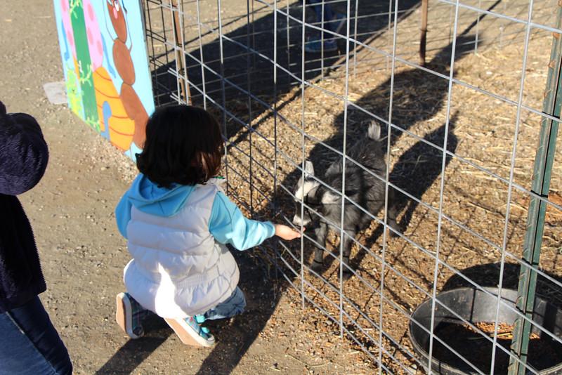 Secco Farm 080.JPG