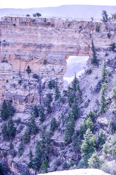 2019 Grand Canyon-259.jpg